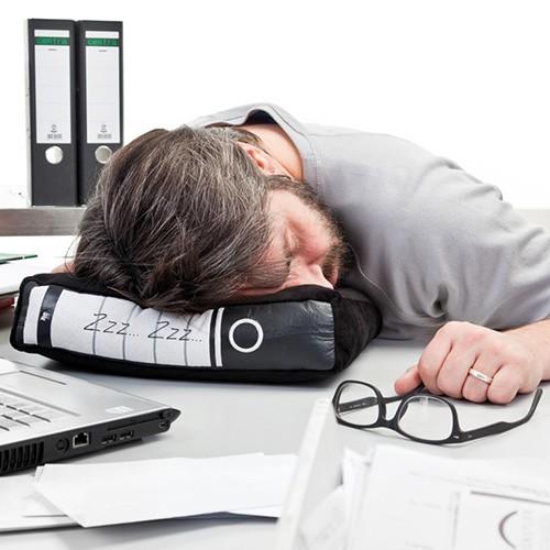 Power-Nap Bürokissen